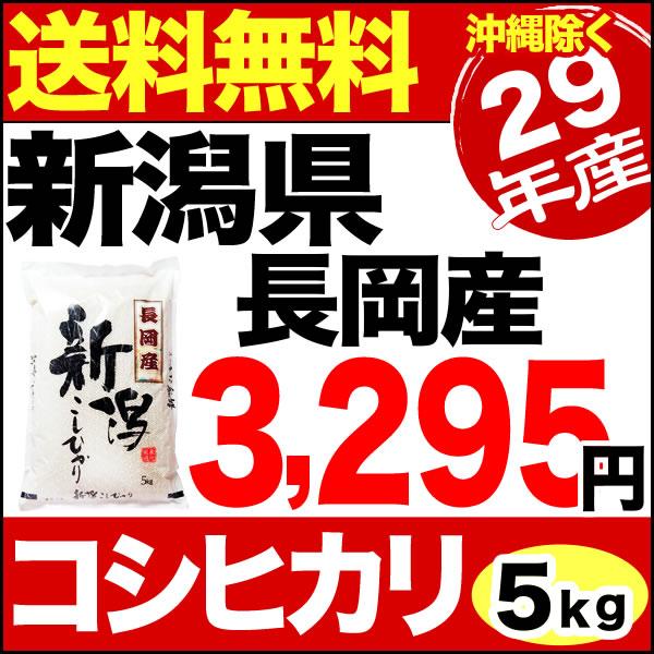 【新米】新潟県長岡産コシヒカリ 5kg 29年産 米 【送料無料】(沖縄を除く)