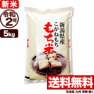 新米 こがねもち米 5kg 令和2年産 新潟産 米 【送料無料】(北海道、九州、沖縄除く)
