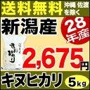 キヌヒカリ 5kg H28年新潟産 米 【送料無料】(沖縄・佐渡を除く)