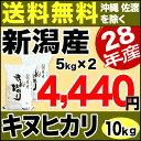 キヌヒカリ 10kg(5kg×2) H28年新潟産 米 【送料無料】(沖縄・佐渡を除く)