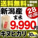 キヌヒカリ 30kg 玄米 H28年新潟産 米 【送料無料】(一部地域を除く)