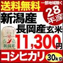 新潟県長岡産コシヒカリ 30kg 玄米 H28年産 米 【送料無料】(一部地域を除く)