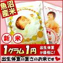 名入れ 出産内祝い ギフト 28年 魚沼産コシヒカリ 抱っこできる赤ちゃんプリント 米 出生体重米 内祝い