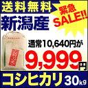 新潟産コシヒカリ 山並 30kg 玄米 H28年産 米 【送料無料】(一部地域を除く) 【緊急セール】