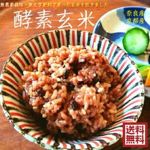 【送料無料】酵素玄米ごはん 1650グラム 冷凍 11個パック 昔ながらの伝統・自然農法、農薬,化学肥料を使わずに育てられたお米を長岡式で炊きあげた もちもち発酵玄米ごはん