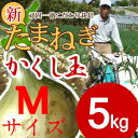 【予約 商品】淡路島産新玉ねぎ#かくし玉5K Mサイズ#
