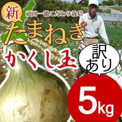 淡路島新たまねぎかくし玉【訳あり】5kg #かくし玉訳あり5K#たまねぎ