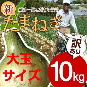 【送料無料】淡路島新玉ねぎ訳あり10キロ