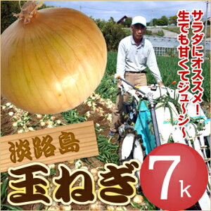 【送料無料】特選 淡路島玉ねぎ 7キロ 淡路島たまねぎ#淡路たまねぎ7K#