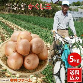 【予約商品】今井ファーム かくし玉【送料無料】淡路島新たまねぎ #かくし玉 5K#