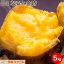 【送料無料】なると金時 5キロ (徳島県鳴門産) 芋 いも サツマイモ さつまいも#なると金時 5キロ#