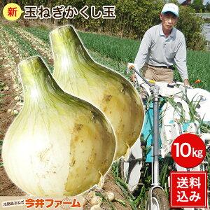 淡路島産新たまねぎ #かくし玉10キロ#【5キロ×2】玉ねぎ 玉ネギ タマネギ