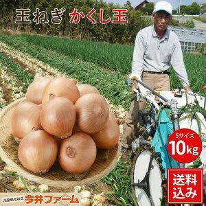 新たまねぎかくし玉小粒、ペコロス、 S、2Sサイズ 10kg#かくし玉sサイズ10キロ#