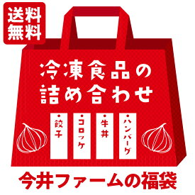 冷凍食品の詰め合わせ福袋【 ハンバ−グ 牛丼 コロッケ 餃子 】#福袋#