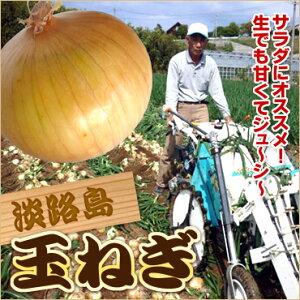 【送料無料】 #淡路島たまねぎ20K#