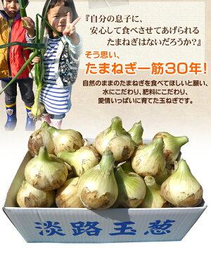 【送料無料】淡路島【新】玉ねぎ訳あり10キロ