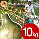【送料無料】 #特選 淡路島新玉ねぎ10キロ#たまねぎ  タマネギ たまねぎ たまねぎ たまねぎ「たまねぎ 10kg 送料無料」