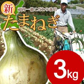淡路島新玉ねぎ3キロ 【タマネギ】【たまねぎ】#淡路たまねぎ3kg#たまねぎ