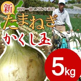 【送料無料】淡路島新たまねぎ #かくし玉 5K#