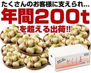 【送料無料】淡路島たまねぎ#かくし玉3K#