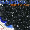 ドライワイルドブルーベリー オレゴン産1kgお徳用(500g×2袋) ドライブルーベリー