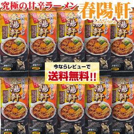 【同梱OK!送料無料】徳島ラーメン 春陽軒 【棒麺2食】入×10袋(ネギ入り)北海道、沖縄及び離島は別途発送料金が発生します