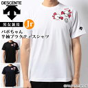 デサント バレーボール Tシャツ ユニセックス 半袖 バボちゃん ジュニア対応 DVA5740 DESCENTE