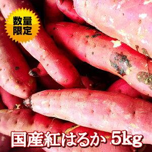 紅はるか 生芋5kg【送料別】農家直売