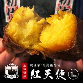紅天使 焼き芋 冷凍 さつまいも 茨城産 送料無料 【1kg】