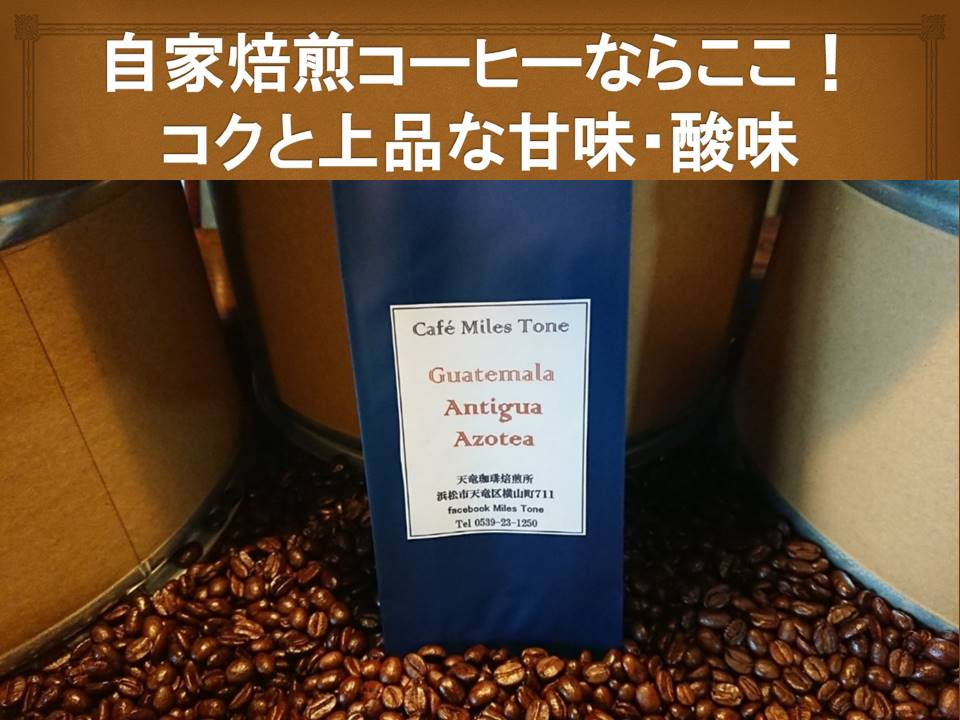 送料無料 自家焙煎コーヒー 珈琲豆 コーヒー豆グアテマラアンティグア シティロースト400g