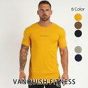 ヴァンキッシュ フィットネス 新作 VANQUISH FITNESS CORE MEN'S SHORT SLEEVED T SHIRT 2 Tシャツ 半袖 メンズ 筋ト…