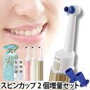 歯ブラシ/トゥースクリーナー クリスタル・ブラン スターターセット AQUA限定スピン...