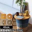 ミニテーブル プランツテーブル PLT Plants Table 45cm プランター 植木鉢 鉢植え 観葉植物 インテリア コーヒーテー…