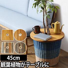 ミニテーブル プランツテーブル PLT Plants Table 45cm プランター 植木鉢 鉢植え 観葉植物 インテリア コーヒーテーブル 天然木 ウッド