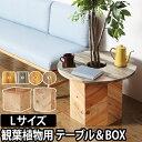 ミニテーブル&プランターカバー プランツテーブル & ボックス Lセット 60cm PLT Plants Table & Box プランター 植…