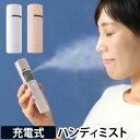 フェイススチーマー 充電式フェイシャルハンディミスト 微粒子ミスト 美顔器 うるおい 保湿 乾燥肌 スキンケア USB充…
