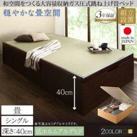 組立設置付 くつろぎの和空間をつくる日本製大容量収納ガス圧式跳ね上げ畳ベッド 涼香 リョウカ 中国産畳 シングル 深さラージシングルベッド シングルサイズ 収納ベッド 収納家具 和モダン 和風スタイル 日本風