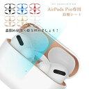 2セット入り AirPods Pro ダストガード 防塵シート エアーポッズプロ メタルシール 金属製 隙埋め スキンシール ガー…