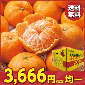 お歳暮 御歳暮 フルーツ みかん ギフト お取り寄せ 送料無料 和歌山県産 JAありだ 有田みかん Lサイズ(約10kg)