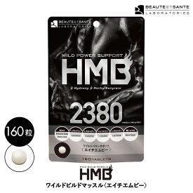HMB 2380 サプリメント HMBCa BCAA 筋トレ トレーニング サプリ