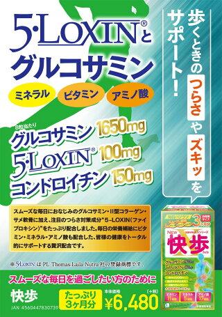 快歩5-LOXIN(ボスウェリアセラータ抽出物)サメ軟骨抽出物グルコサミン1650mgビタミンミネラルアミノ酸【送料無料】ボーテサンテラボラトリーズ
