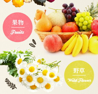 プレミアム生酵素ソフトカプセル90粒約45日分【メール便送料無料】ダイエット美容