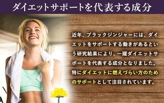 【メリロート】【送料無料】メリロートエキスサプリメントブラックジンジャーコーンシルクエキスダイエット美容