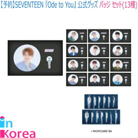 SEVENTEEN バッジ セット(13種) SEVENTEEN BADGE SET / K-POP 2019 SEVENTEEN WORLD TOUR 'ODE TO YOU' IN SEOUL コンサートグッズ 缶バッジ