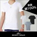 グンゼ【BODYWILD】VネックTシャツ(綿100%)BWB415【あす楽_土曜営業】【あす楽_日曜営業】