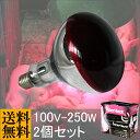 ランプヒーター100V-250W(2個セット)【赤外線】【ヒーター】【肥育】【飼育】【保温球】【電球】【スポットランプ】【長寿命】【 爬虫類】【ヒートランプ】