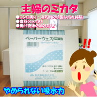 ペーパーウエスクリーン4プライ×50組(24個)