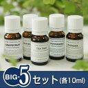 『BIG-5セット』※人気5銘柄のスペシャルセットです!!(真正ラベンダー・オレンジスゥイート・ティートリー・グレープフルーツ・ペパーミント/各10ml)(日本...