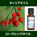 ローズヒップオイル[未精製] 20ml〜キャリアオイル(植物油/ベースオイル)〜 【IST】