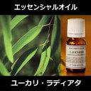 ユーカリラディアタ 10ml〜エッセンシャルオイル/精油/アロマオイル〜(日本アロマ環境協会/表示基準適合認定精油/イ…